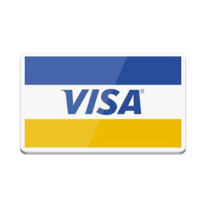 В России мошенники сняли с банковских карт 90 млн евро за год