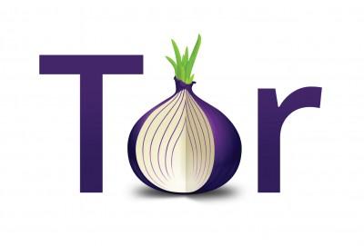 В Госдуме предложили заблокировать доступ к анонимной сети Tor